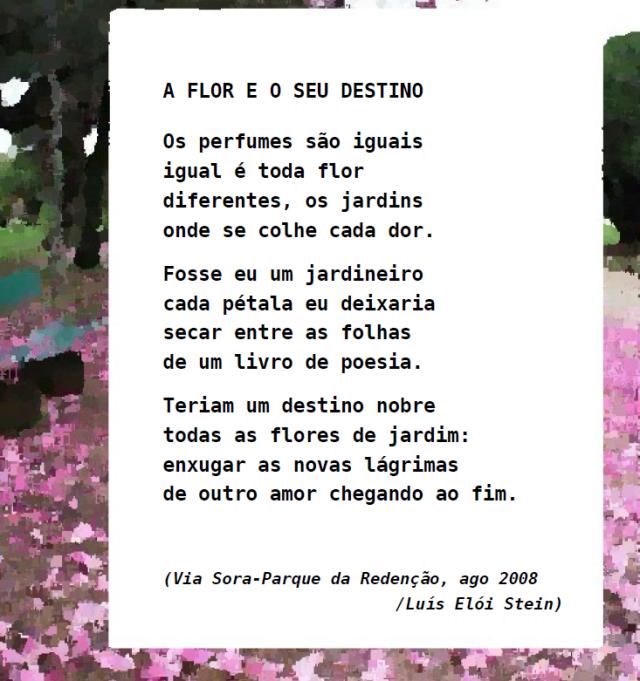 A flor e o seu destino 2008 Sora-Farroupilha c oleo